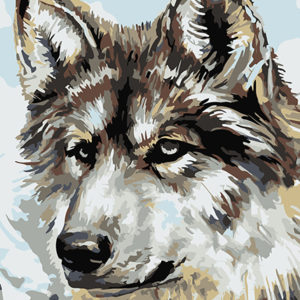 Painting by Numbers Wolf A4 29,7x21cm TA40117
