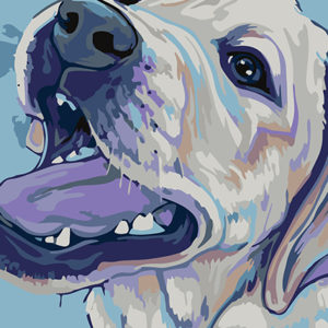 Painting by Numbers Labrador A4 29,7x21cm TA40125