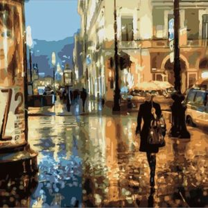 Painting by numbers kit Night Walk 50x40cm T50400289